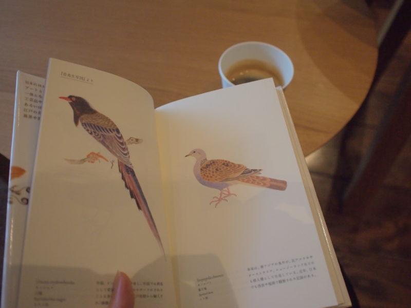ラウンジでコーヒー片手に読書