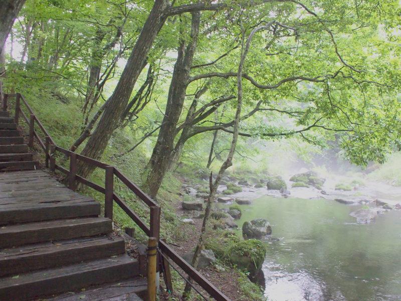 リゾナーレ那須の散歩道