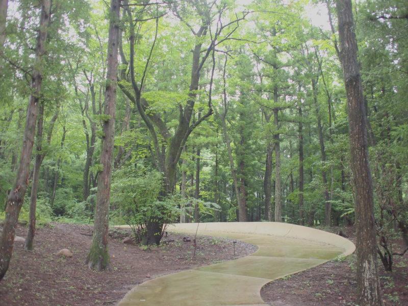 緑と散歩道のアーチ